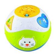 Weidey Ball Learning Machine