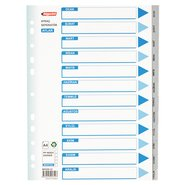 PP 11 Holes Subject Dividers 12-Tab (Months)