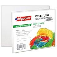Artists' Canvas Panel 10x12cm