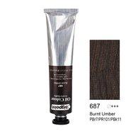 Oil Colour 200ml Burnt Umber 687